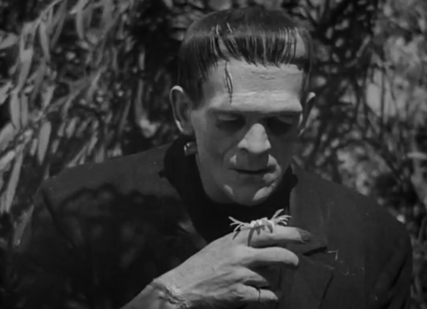 frankenstein who is the real Writing a paper on frankenstein, and i need like specific examples of how victor is the real monster as opposed to his creation.
