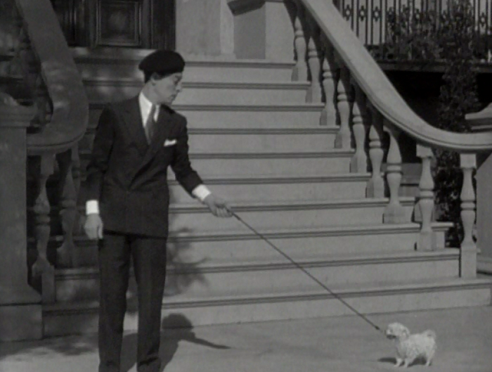 Pre-Code dog watch: tiny pups named Fifi are adorable.