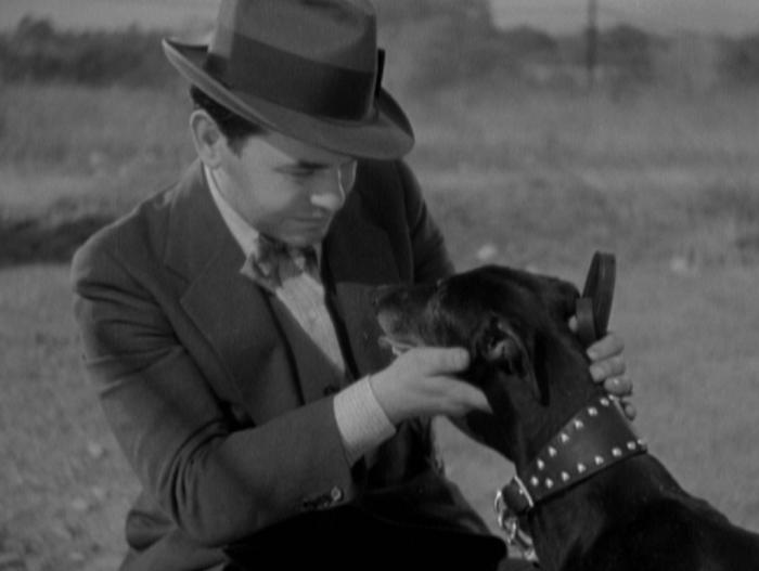 Dark Hazard (1934)